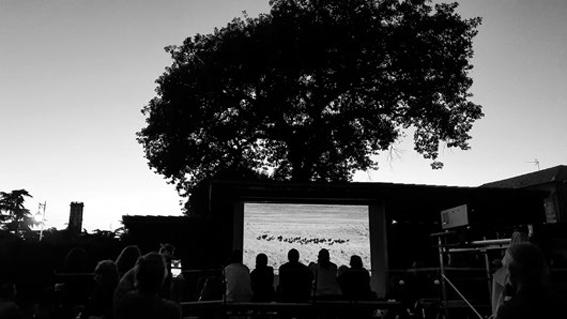 http://www.cinemas-utopia.org/U-blog/avignon/public/410/SAS.jpg